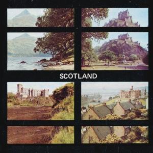 Ghost Cousin - Scotland cover image black